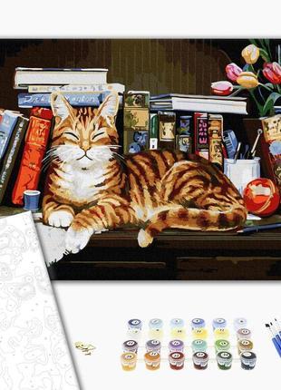 Картина по номерам  винтаж кот на книжной полке