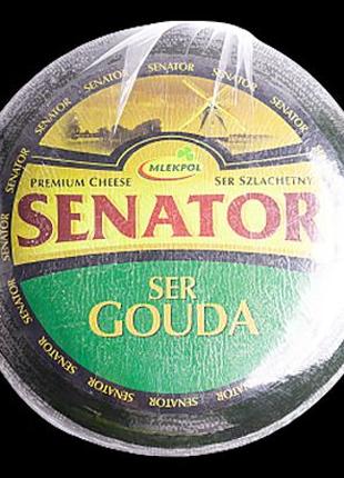 Сир Сенатор Гауда.