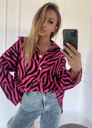 Рубашка зебра