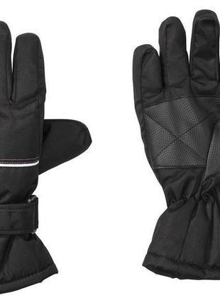 Лыжные термо перчатки crivit pro, размер 4.5, 6, 6.5