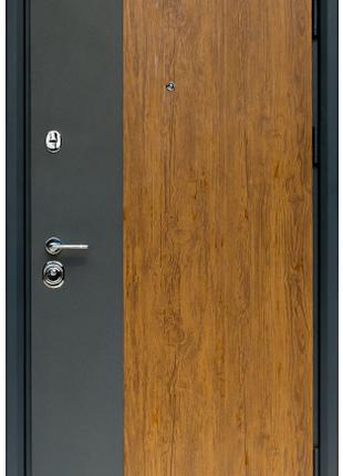 Входная Дверь Коллекции СТАТУС S-3 дуб золотой+графит