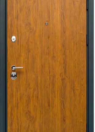 Входная Дверь Коллекции СТАТУС S-2 дуб золотой/графит