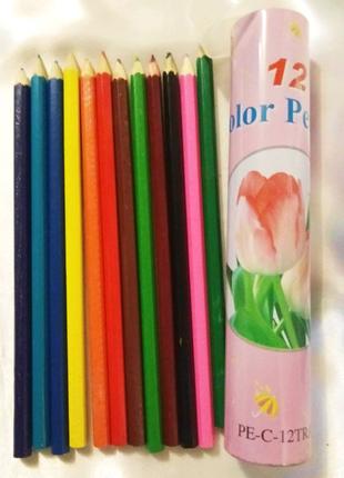 Набор цветных карандашей 12 цветов в металлическом пенале