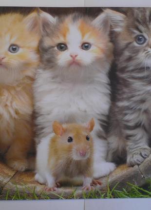 Плакат постер котята и крыс.