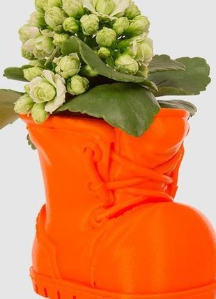 Красивый ботинок растение цветы вазон в офис на стол на подарок с
