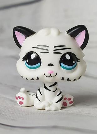 Custom-made mini kitten baby littlest pet shop #1498