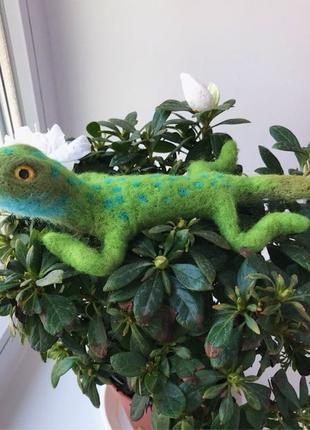 зеленая ящерица из шерсти