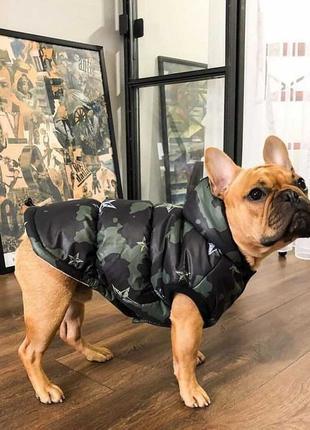 Жилет для собак  камуфляж на синтепоне флис Одежда для собак