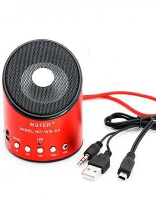 Bluetooth колонка WSTER WS-A9