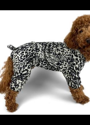 Костюм ангора леопард для собак унисекс одежда для собак