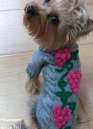 Красивая и модная одежда для собаки превосходного качества