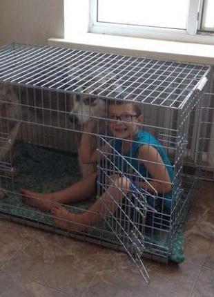 Клетка, переноска, манеж, вольер для собак №6, 107х70х80h волк-2