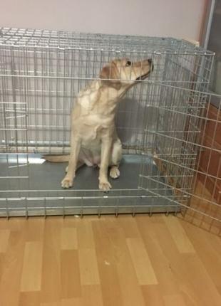 Клетка, переноска, манеж, вольер для собак кошек №5, 92х63х70
