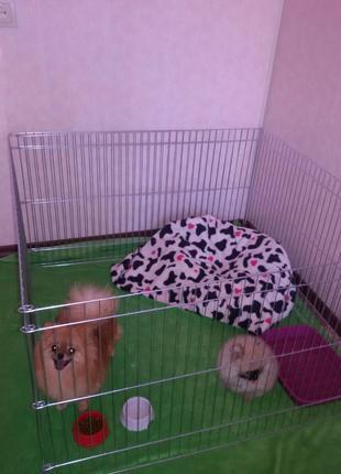 Вольер, манеж, клетка для собак, кошек, птиц 100х100х60