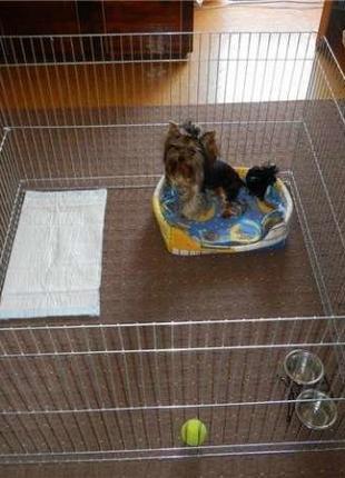 Вольер, манеж клетка для собак, кошек, птиц 100х100х60h на прокат