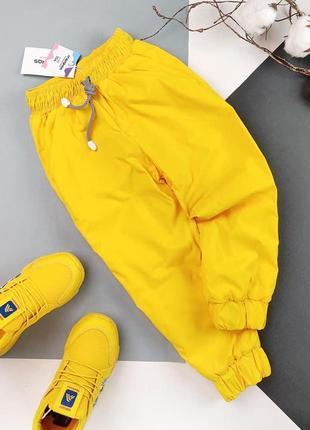 Демисезонные штаны для мальчиков и девочек