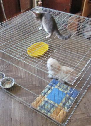 Вольер, манеж закрытый, клетка для собак щенков котят 100х100х60h