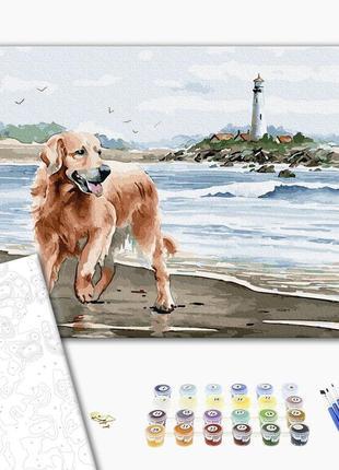 Картина по номерам набор лабрадор у воды