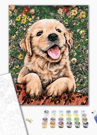Картина по номерам очаровательный пес
