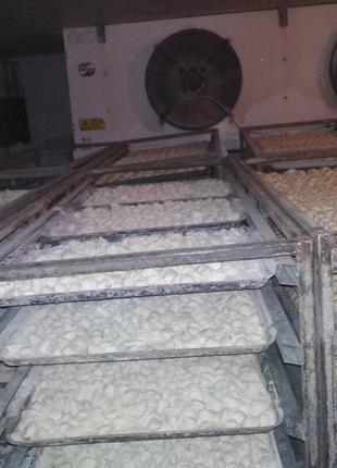 Камери морозильні для заморозки пельменів
