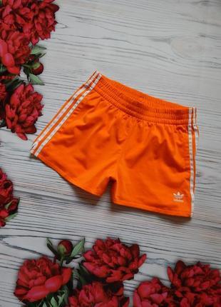 Яркие,  женские спортивные шорты от adidas оригинал.  размер l.