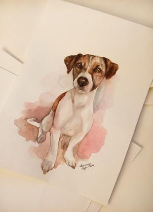 Портрет собаки, кошки и других животных на заказ
