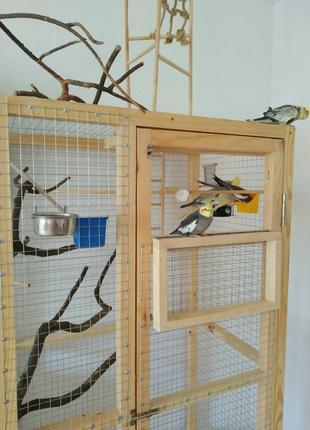 Изготовление клетки вольеры для декоративных птиц и др Ваших пито