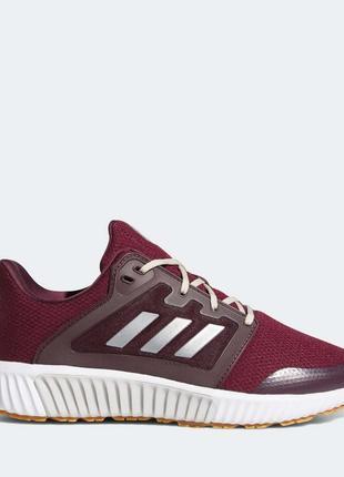 Женские кроссовки Adidas Climawarm 120 (EF1299)