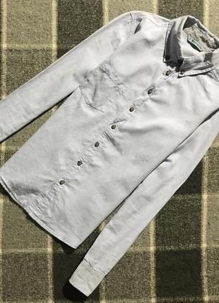 Женская рубашка terranova ( терранова с-мрр идеал оригинал гол...