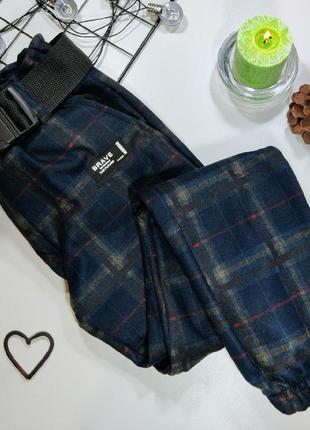 Теплые джогеры,  теплые штаны