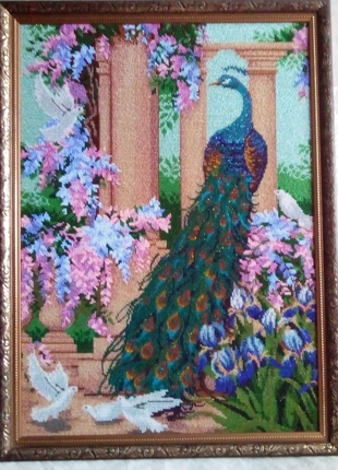 Павлин и голуби