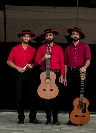 """Акустический испанский коллектив """"Trio de Verano"""""""
