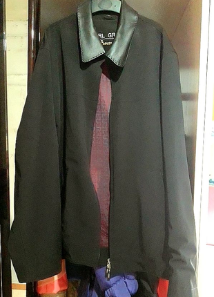 Курточка демисезонная мужская