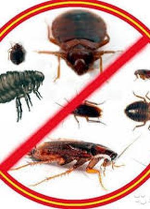 Уничтожаем вредных насекомых