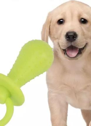 Жевательная игрушка для собак и щенков