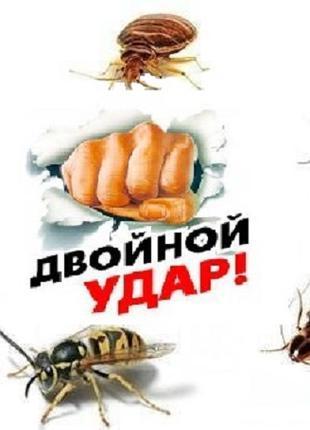 Дезинсекция. Уничтожение тараканов, блох, клопов.