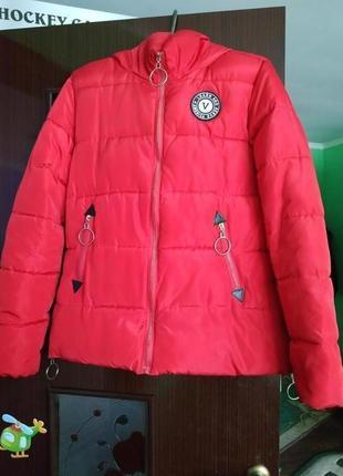 Куртка осінь-весна (куртка осень-весна)