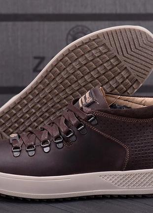 Мужские зимние кожаные ботинки ZG Chocolate Exclusive
