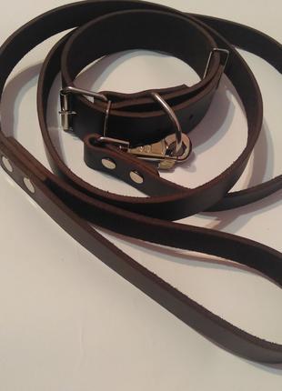 Кожаный поводок и ошейник для собаки