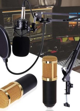 Микрофон Студийный DM 800 Конденсаторный для Видео и Стримов Студ