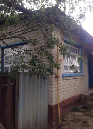 Продается дом в селе Боромыки Черниговская область