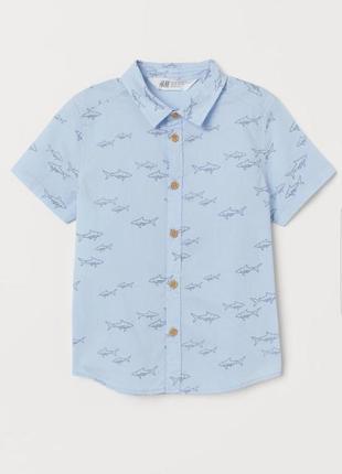 Рубашка h&m с короткими рукавами, тенниска h&m.