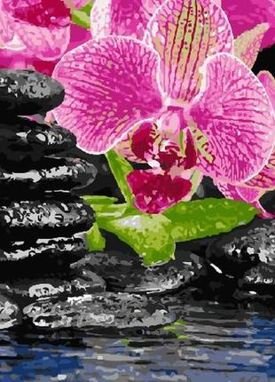"Картина по номерам rainbow art ""цветок и камни"" gx4482"