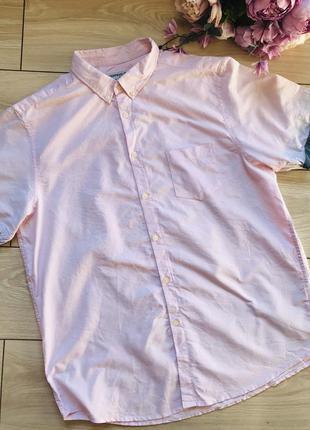 Бледно-розовая мужская рубашка с коротким рукавом хлопок xl