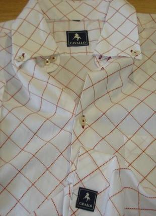 """Pубашка с коротким рукавом  """"cavallo"""""""