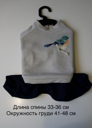 Одежда для собак Pet Fashion M