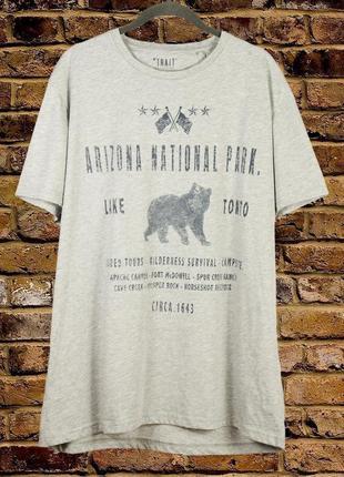 Серая футболка мужская со штатом аризона