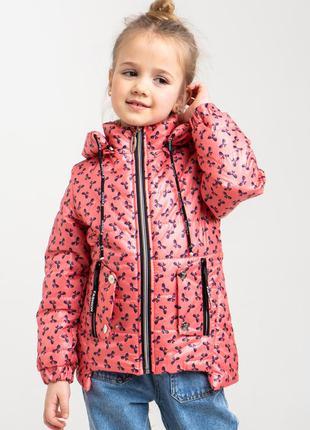 Замечательные куртки детские демисезонные для девочки