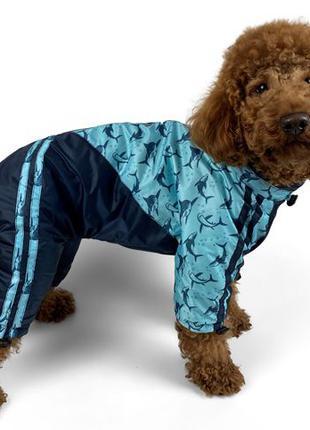 Дождевик на флисе. Модная одежда для собак. Качество супер!