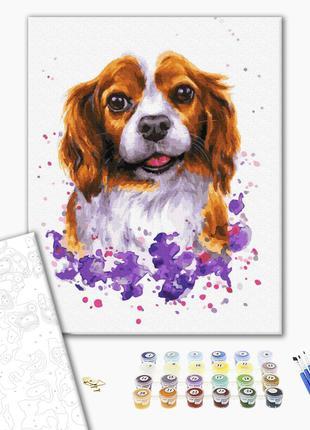 Картина по номерам Собачка в красках